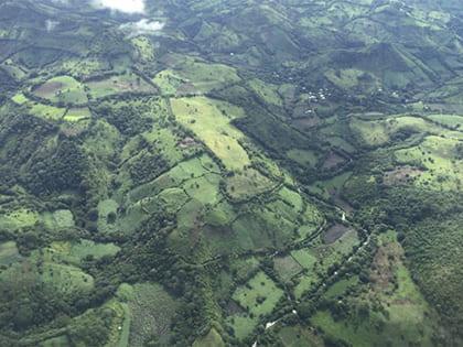 Reforestation in Nicaragua